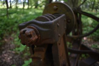 Old abandoned farm equipment at the edge of a mature forest